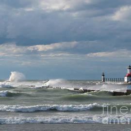 Ann Horn - Windblown Lake Michigan