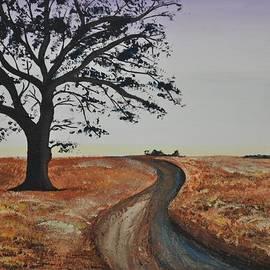 Sally Rice - Winding Road