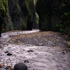 Jeff  Swan - WINDING THROUGH ONEONTA  GORGE