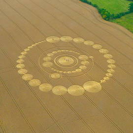 Denise Mazzocco - Windmill Hill Crop Formation