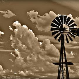 Shane Bechler - Windmill
