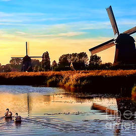 Mihaela Pater - Windmills and swans