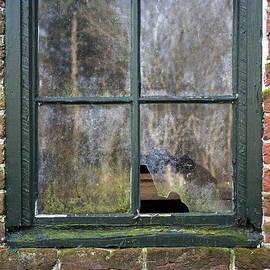 Brian Wallace - Window At Abbott