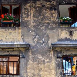 Amy Fearn - Window Dressing - Firenze