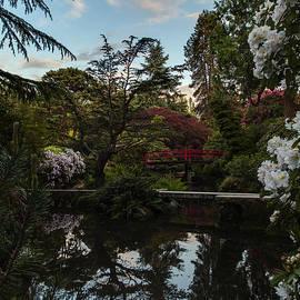 Mike Reid - Window into the Northwest Kubota Garden