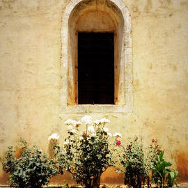Lainie Wrightson - Window of Arkadi