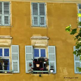 Allen Sheffield - Windowboxes in Nice France