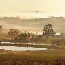 Rick Drent - Wine Country