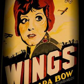 Karol  Livote - Wings Of Yesterday