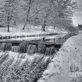 Nigel Jones - Winter at Fountains Abbey
