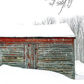 Geoffrey Coelho - Winter at Spec Pond Farm No. 1