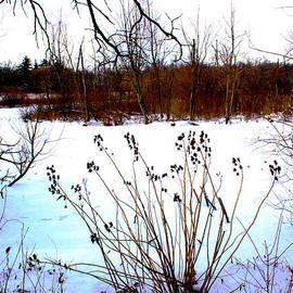 Robert Storost - Winter at the Pond