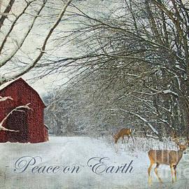 Lianne Schneider - Winter Barn 2 - Peace on Earth