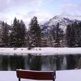 Ian Mcadie - Winter Calm