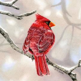 Sarah Batalka - Winter Cardinal