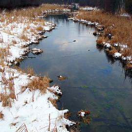 David T Wilkinson - Winter Creek