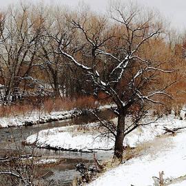 Gretchen Wrede - Winter Creek in Cinnamon Amber