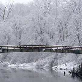Ian Mcadie - Winter Crossing