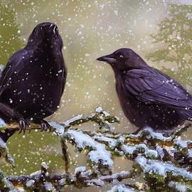 Ken Morris - Winter Crows
