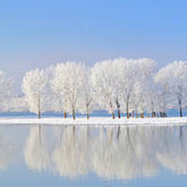Laurentiu Iordache - Winter Danube Panorama