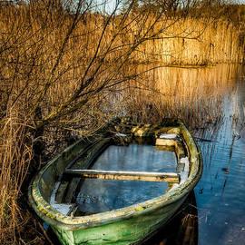 Adrian Evans - Winter Decay