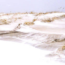 William Walker - Winter Dunes