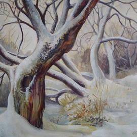 Elena Oleniuc - Winter