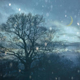 Jan Bickerton - Winter Evening