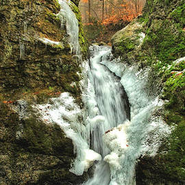 Karol  Livote - Winter Falls