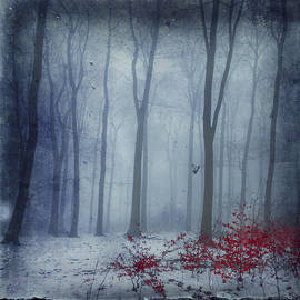 Dirk Wuestenhagen - Winter Forest in Red and Blue