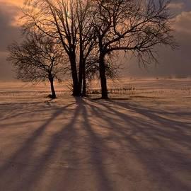 Tim Good - Winter Glory