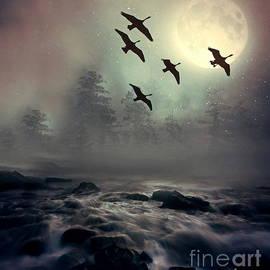 Andrea Kollo - Winter Golden Hour