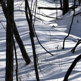 Fred  Sheridan - Winter Hillside