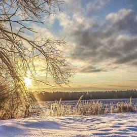 Rose-Maries Pictures - Winter Idyll