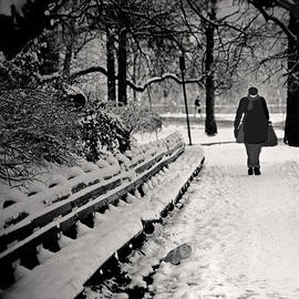 Madeline Ellis - Winter In Central Park