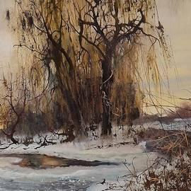 Danil Shurykin - Winter In Roskishne. Not far from Lugansk