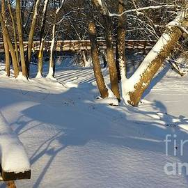J Anthony Shuff - Winter in the Park