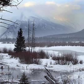 Inge Riis McDonald - Winter in the Rockies