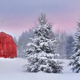 Lori Deiter - Winter in Upstate NY