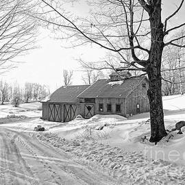 Marcia Lee Jones - Winter In Vermont