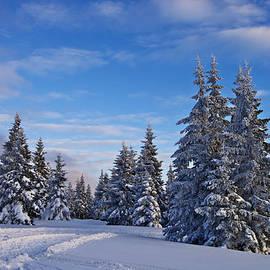 Ivan Slosar - Winter