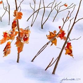 Joan A Hamilton - Winter Leaves