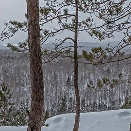 Steve Dunsford - Winter Lookout