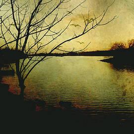 Ann Powell - Winter Moody Sunset