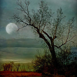 John Anderson - Winter Moon