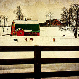 Pamela Phelps - Winter Morals at the Farm