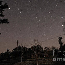Donna Brown - Winter Night Sky