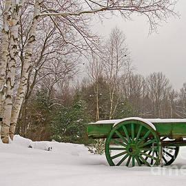 Alana Ranney - Winter on the Farm