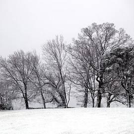 Sean Cupp - Winter on the Pantops Cville