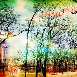 Diana Huff - Winter Park